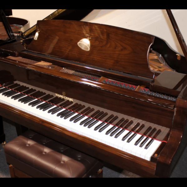 Young Chang Y-150 walnut