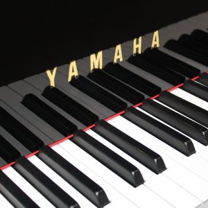 Yamaha Pianos (all models)